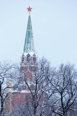 Troitskaya Trinity tower of Moscow Kremlin, topped with a red star, view through the desert winter park