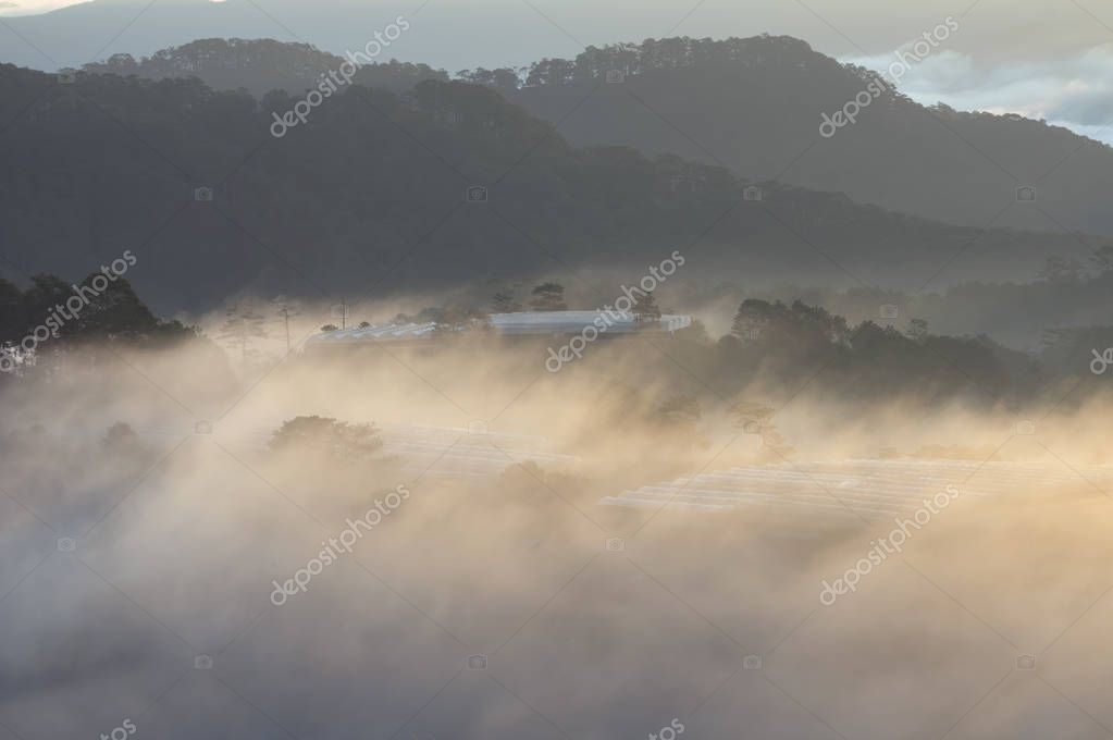 Farm in the magic fog and sunrays at sunrise, artwork done elaborately, landscape and nature at the dawn, great images for printing, advertising, travel magazines and more