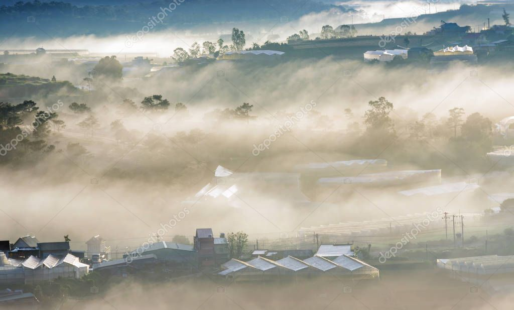 The farms growing flowers, vegetables using high-tech agriculture and houses in rural in vietnam with beautiful fog and light at dawn background