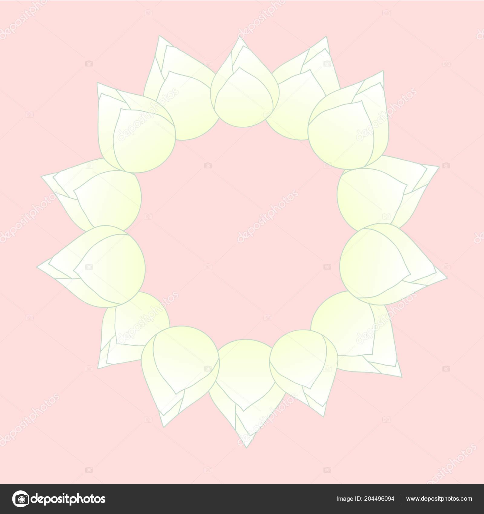 White Bud Indian Lotus Wreath Nelumbo Nucifera Sacred Lotus Bean