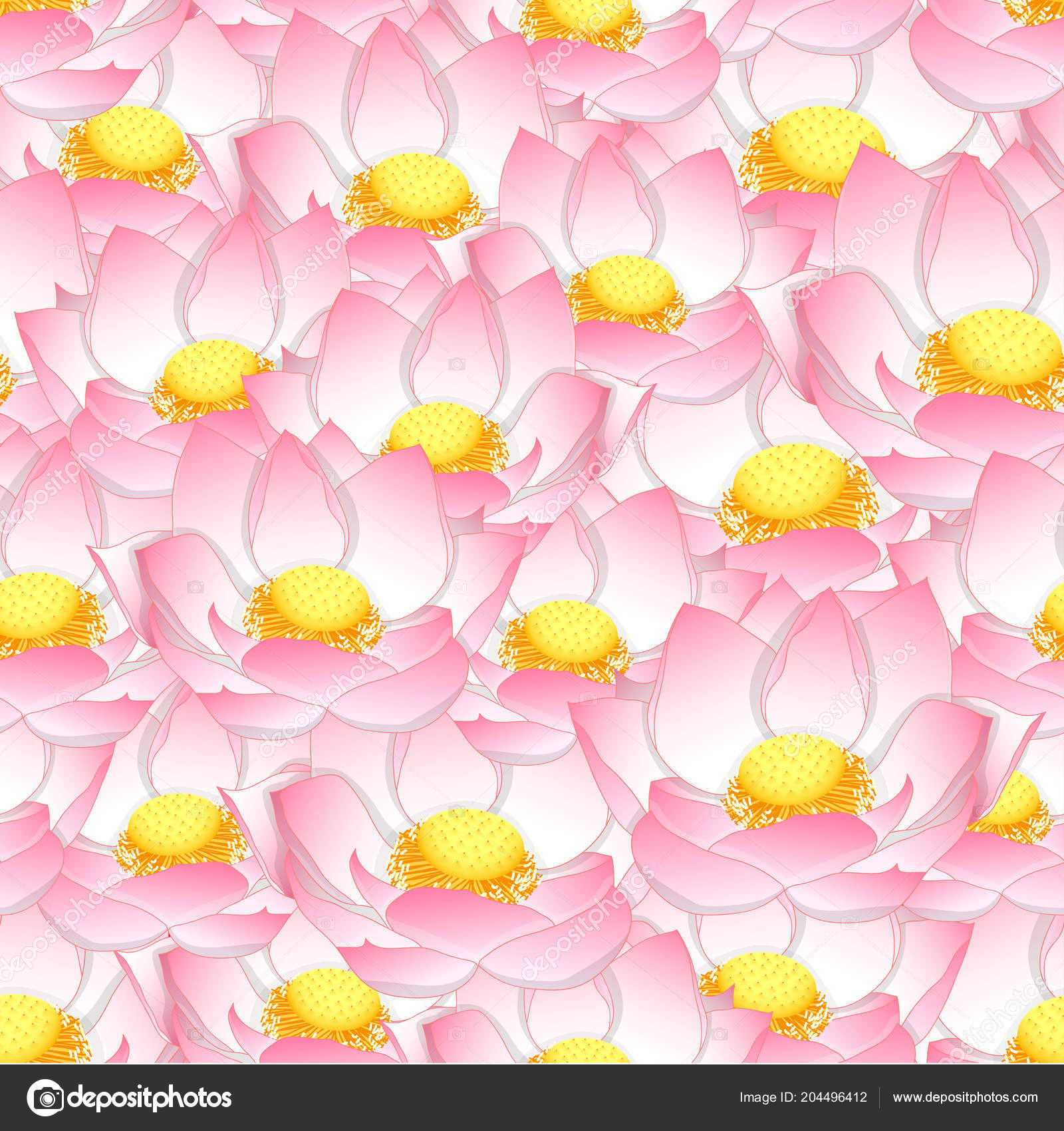 Pink Indian Lotus Seamless Background Nelumbo Nucifera Sacred Lotus