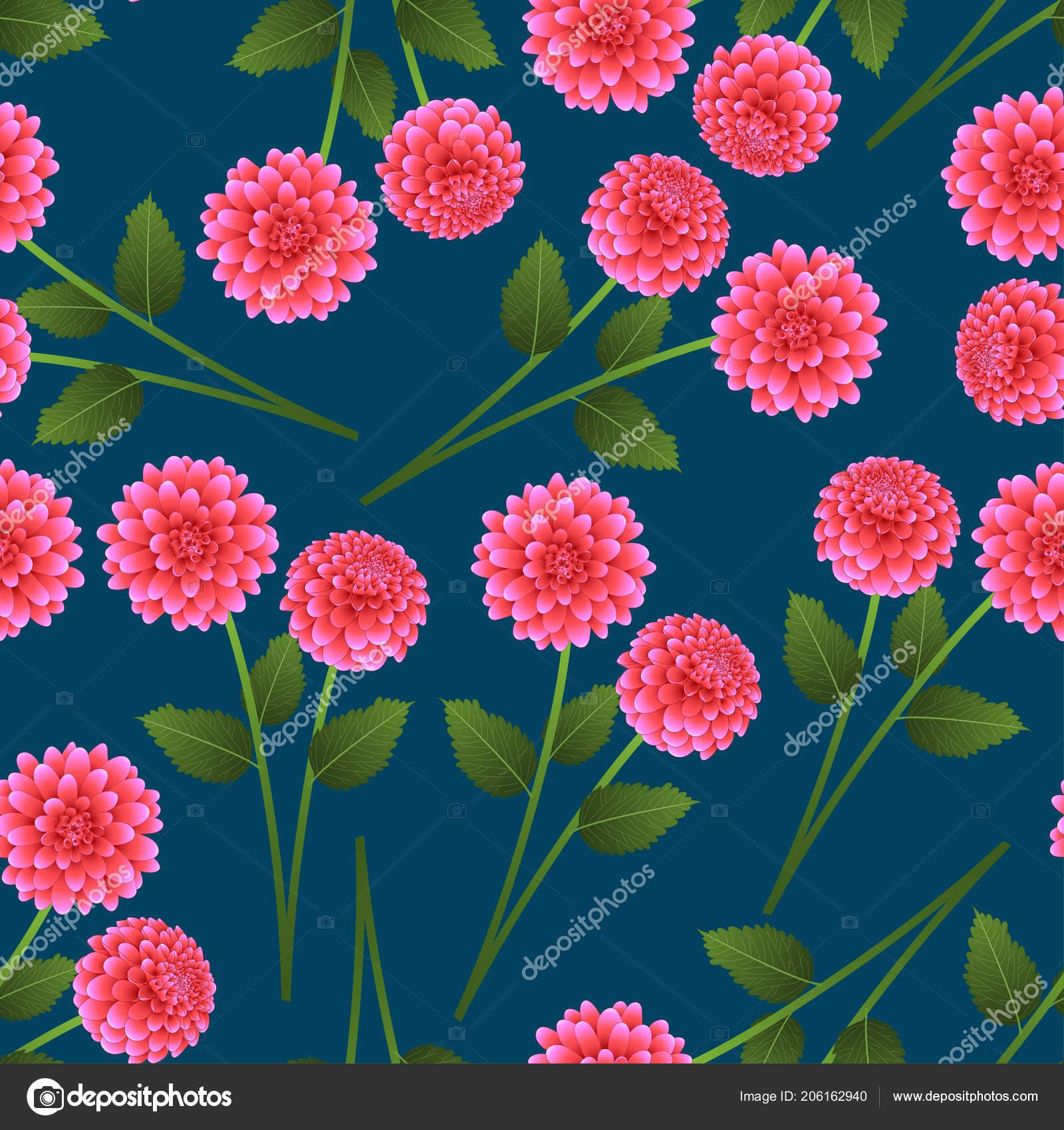 Dahlia Rose Sur Fond Bleu Indigo Fleur Nationale Mexique