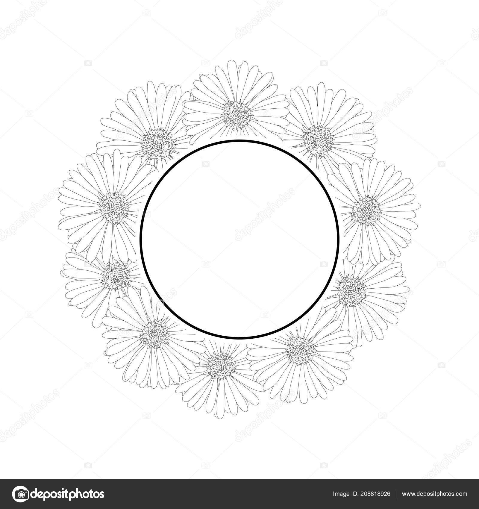 Aster Daisy Flower Outline Banner Wreath Vector Illustration