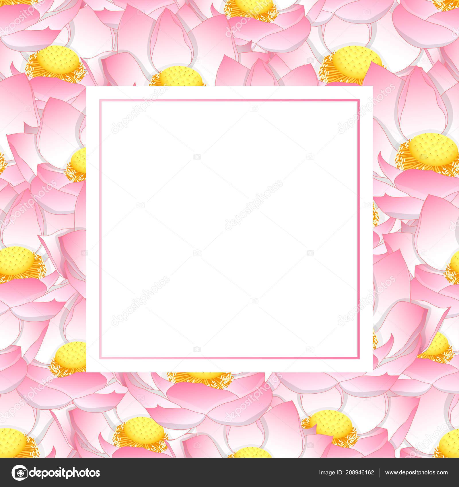 Pink Indian Lotus Banner Card Nelumbo Nucifera Sacred Lotus Bean