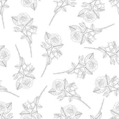 Rose Bouquet Outline on Black Background. Vector Illustration.