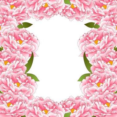 Pink Peony Flower Border isolated on White Background. Vector Illustration.