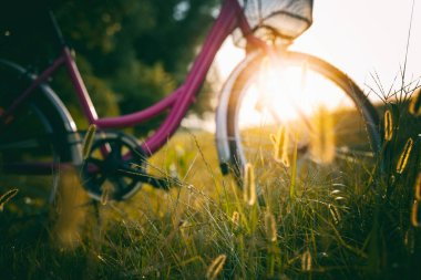 The bike stands in the golden grass with spikelets in forest during sunset, beautiful summer autumn background. Blurred image