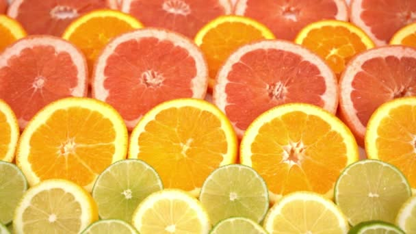 oranges ,grapefruit, and other fruits sliced