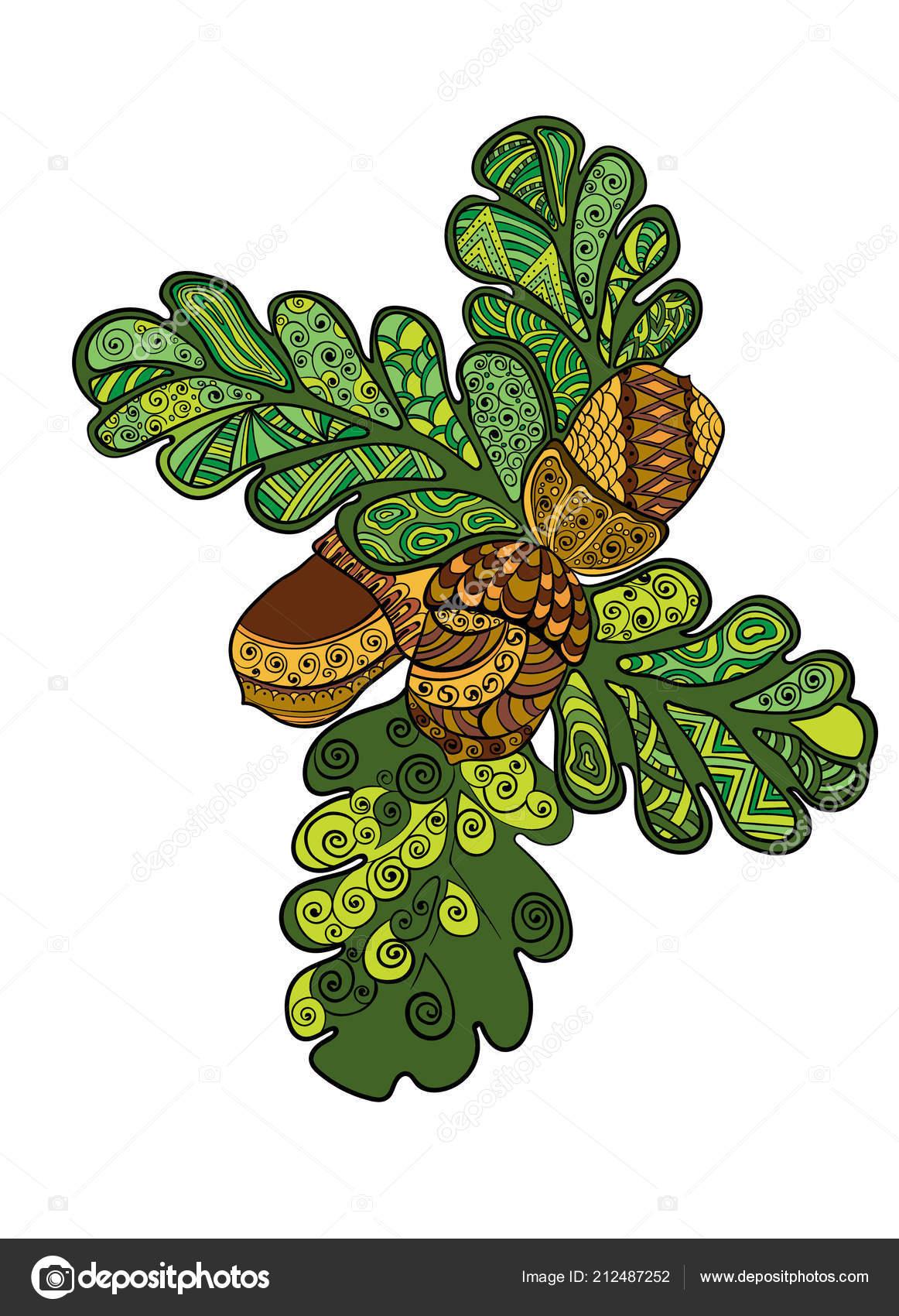 Acorn Autumn, Acorn, food, leaf, color png | Klipartz