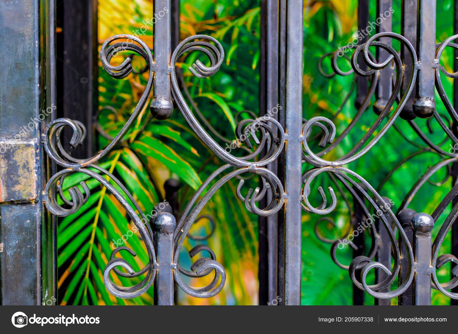 кованые железные двери гриль парке стоковое фото