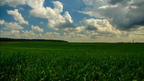 Mezőgazdasági területen. TimeLapse mezőgazdasági területen. 39