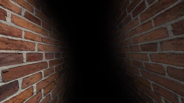 The dark corridor. Tunnel with darkness. 44