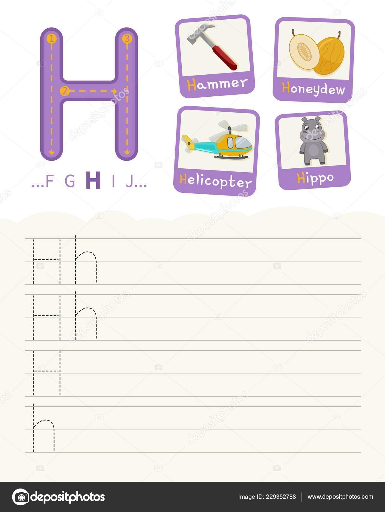 hippo bas basic