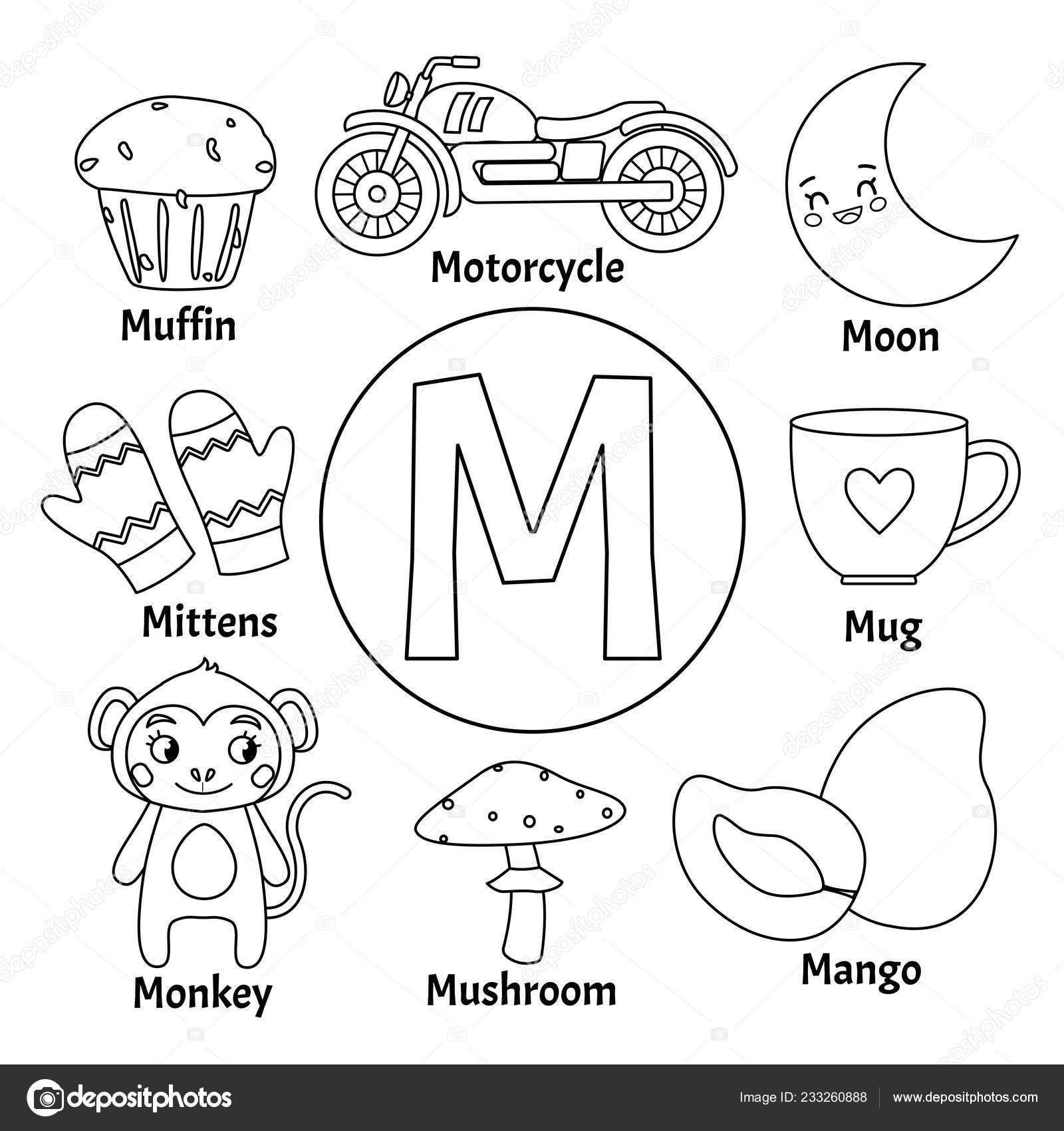 Alfabeto Animal Niños Lindos Vector Conjunto Ilustraciones