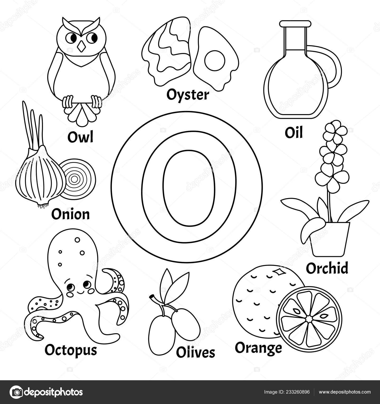 Alfabeto Animal Niños Lindos Vector Letra Conjunto