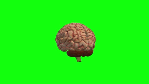 Zelená obrazovka kovová abeceda písmeno Q laser animace