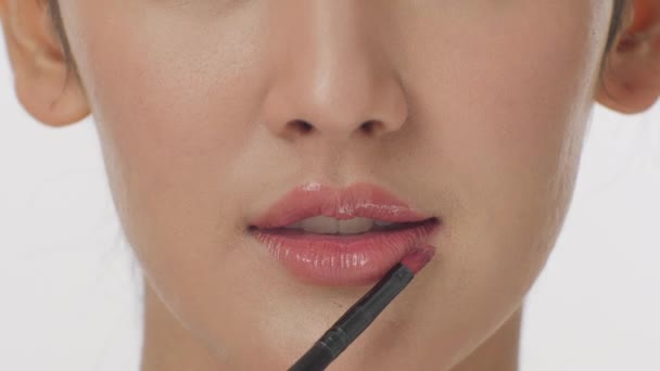 Makeup artist applying liquid lipstick with brush on lips young woman.