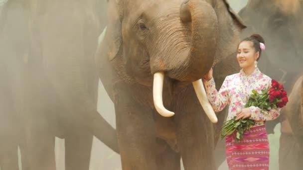 Něžnost mladé atraktivní asijské ženy v tradičních lidových krojích s slon.