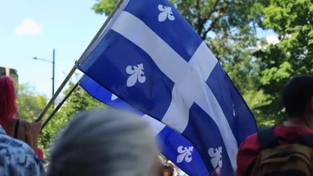 Woman holding quebec flag standing in protest