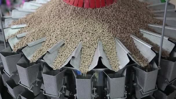 The conveyor for the preparation of granular products of granules. Technology of preparation of feed for animal cats and dogs.