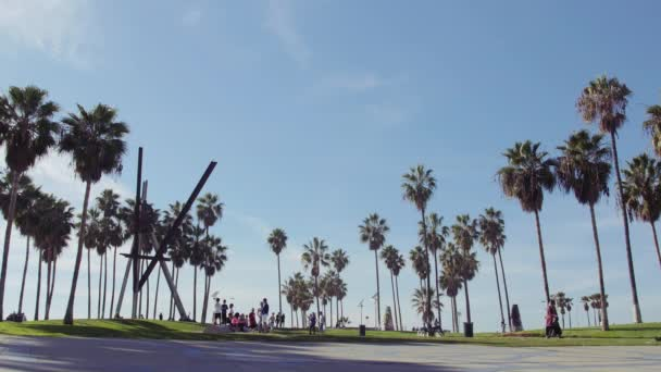 Venice Beach pálmafák  kék ég festői, Los Angelesben