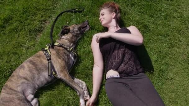 Giovane donna che si trova nellerba verde lunga con il cane nel parco