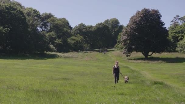 Giovane donna felice che funziona con il cane al rallentatore, nel prato / parco