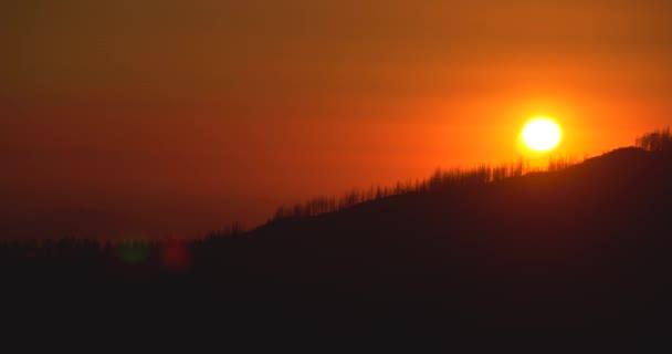 Beautiful Golden Sunset over Sequoia Tree Silhouette Landscape in California