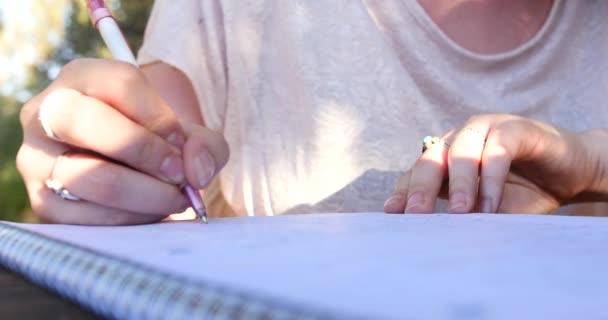 Levél írása a Notebook / tanul a szabadban nő