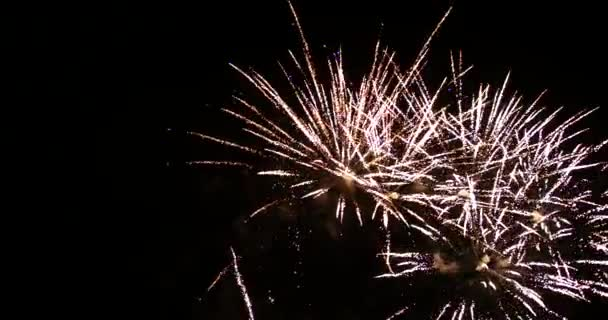 Amazing Fireworks Display Sequence on Black Background with Audio