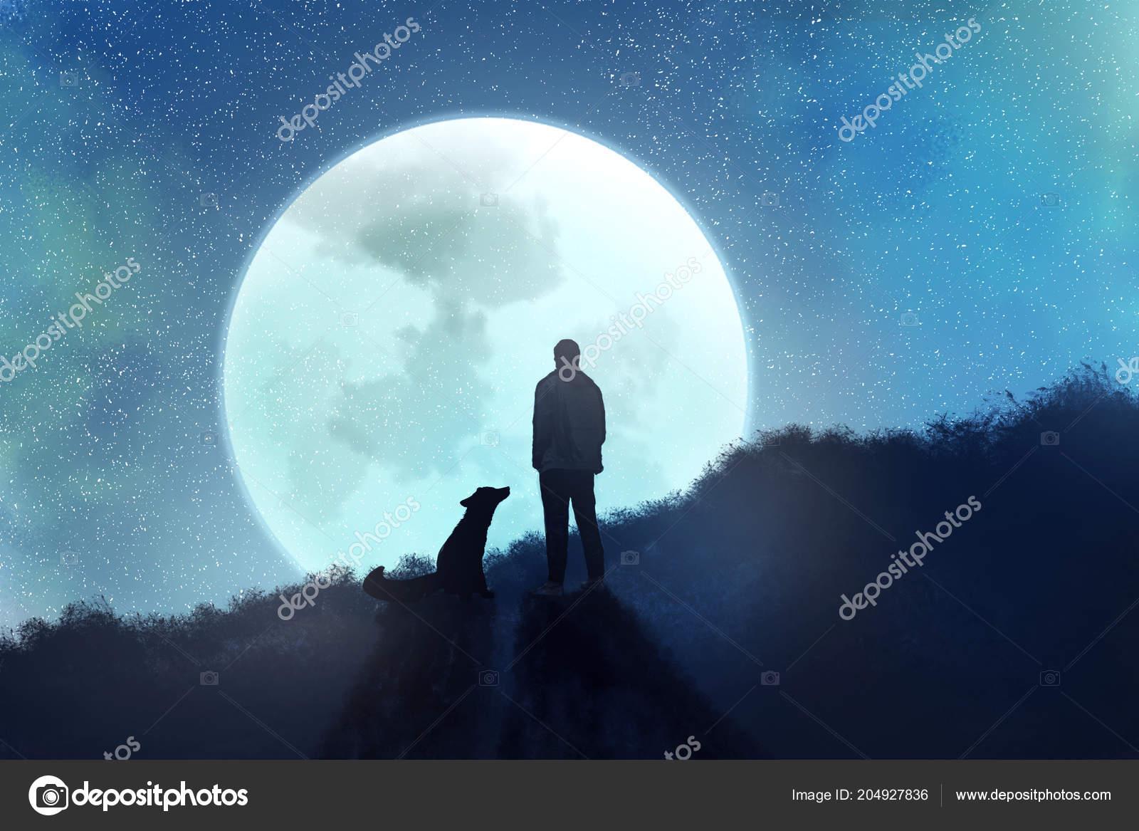 Uomo Con Volpe Erge Sullo Sfondo Del Cielo Stellato Disegno Foto