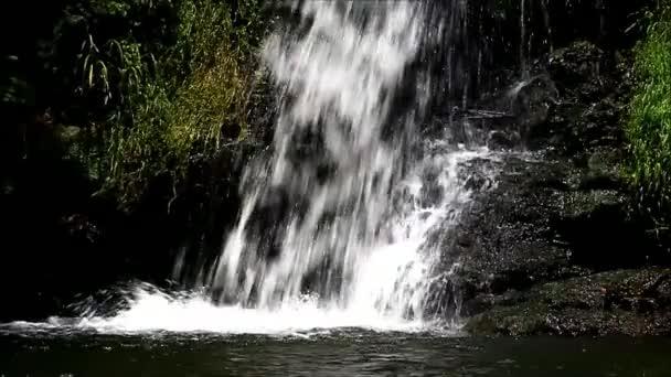 nature landscape green river
