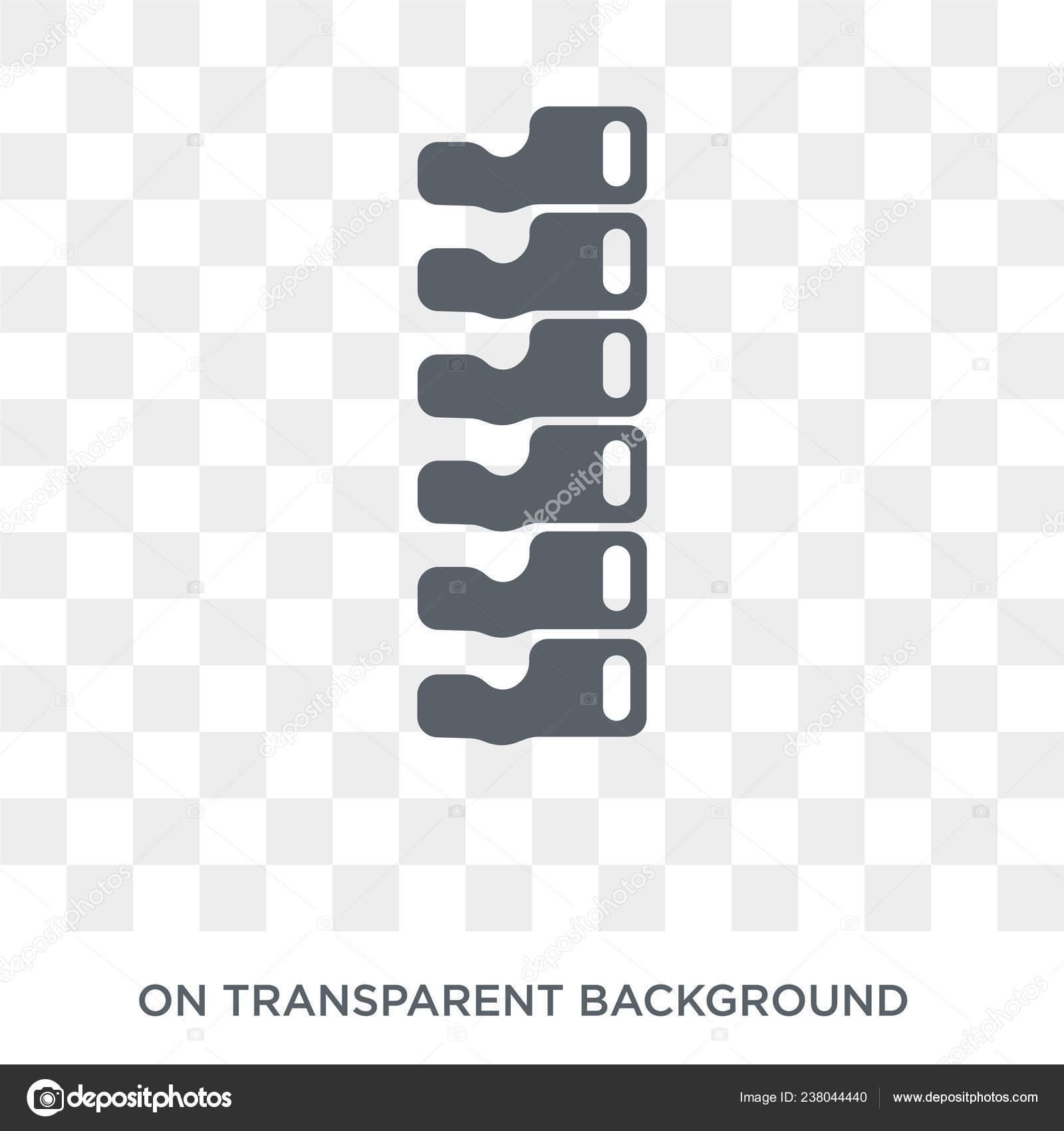Spine Bone Icon Trendy Flat Vector Spine Bone Icon Transparent