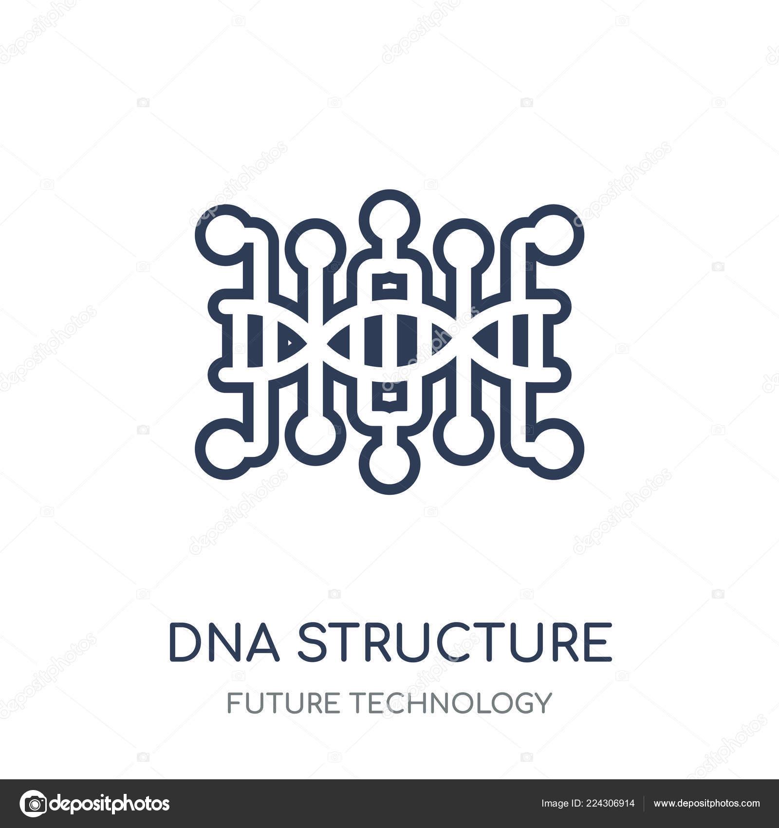 Icono Estructura Del Adn Diseño Símbolo Lineal Estructura