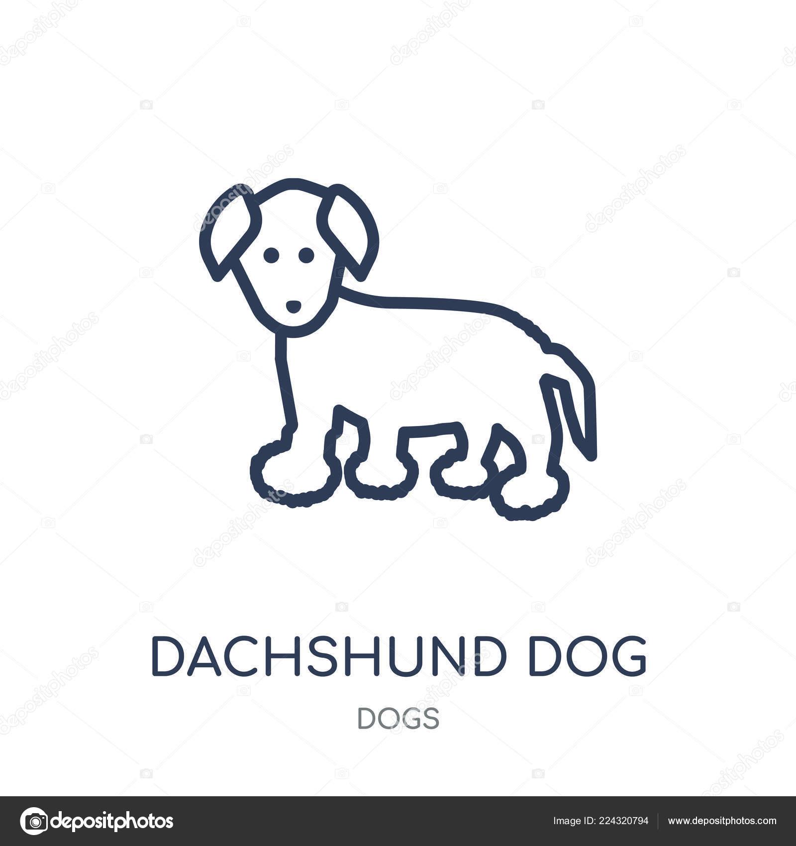 Disegno Di Un Cane Facile.Dachshund Dog Icon Dachshund Dog Linear Symbol Design Dogs