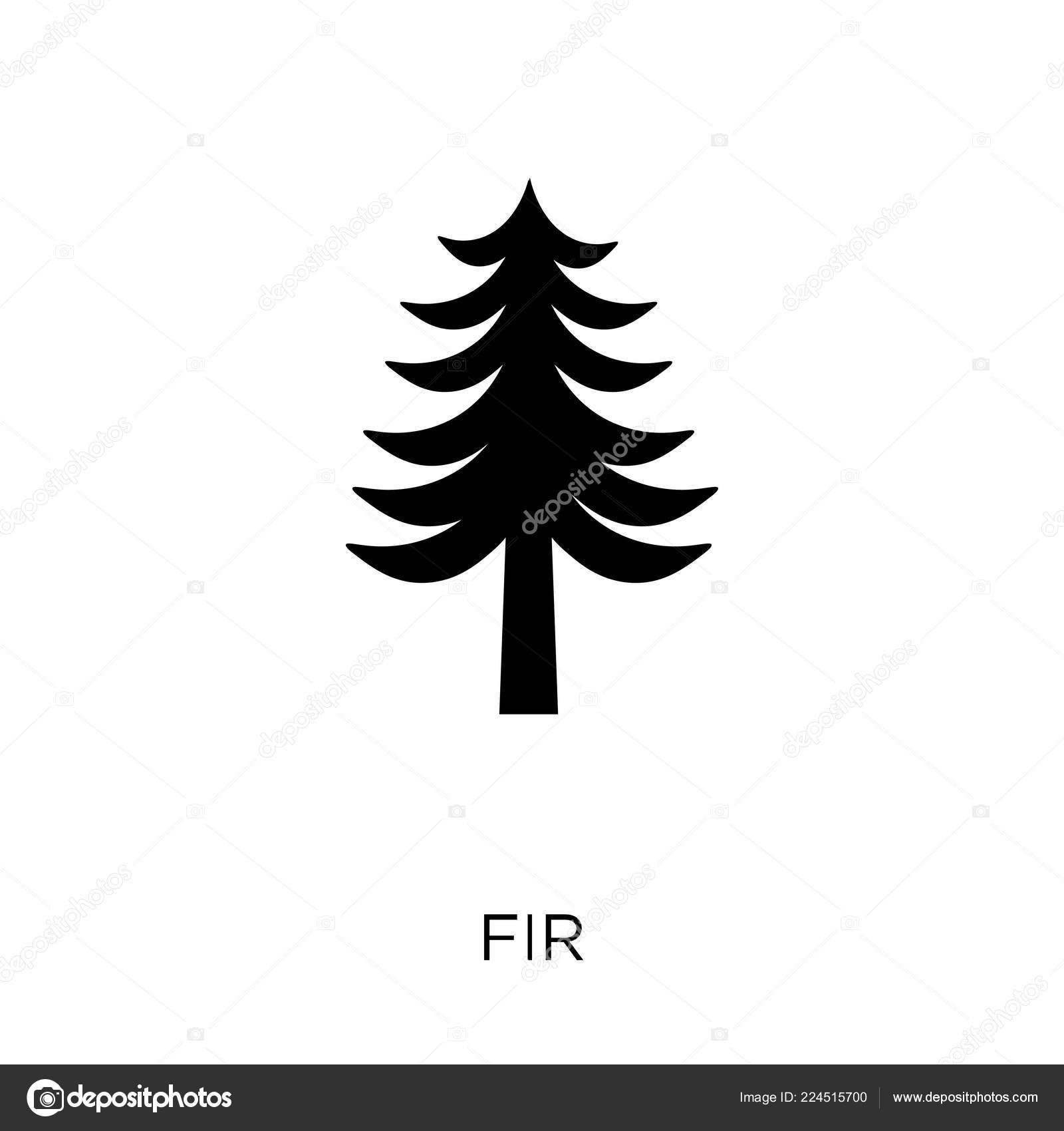 Icona Abete Disegno Simbolo Abete Collezione Invernale Illustrazione