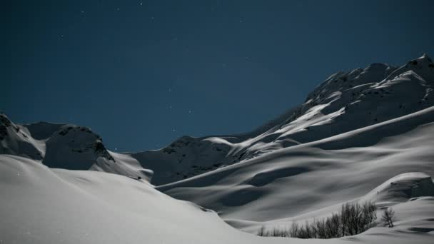 Night Stars And Shadows. Wild Foreground Movement Shadows On Snow