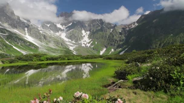 Čerstvé kvetoucí horské louky jeřáb tah