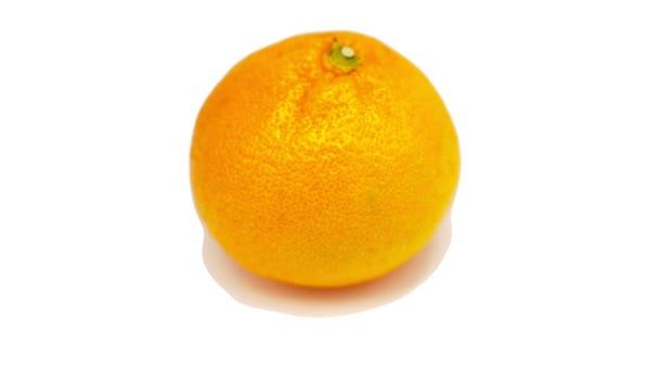 One mandarin rotates on a white background. Close-up.