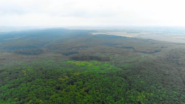 Letecký pohled na přesun do lesa a horské údolí s mlhou vysoko na obloze. 4k.