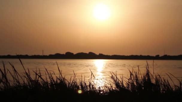Třpytivé vody jemně tekoucí řeky při západu slunce, s vysokou travou kymácí ve větru