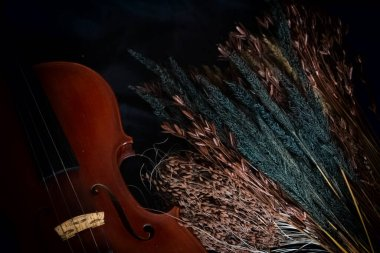 Dried flower plenty on background,beside half front side of violin,vintage and art tone,blurry light around