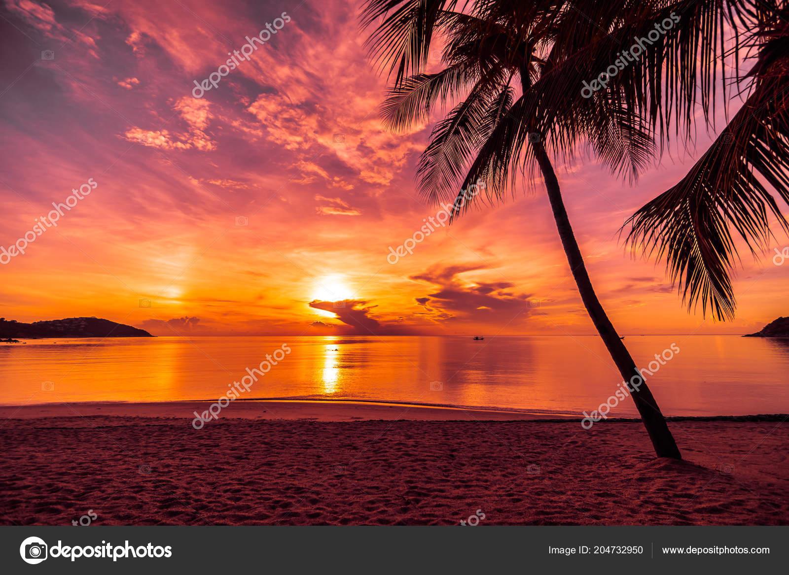 Atardecer Playa Isla Paraíso Tropical Mar Con Palmeras