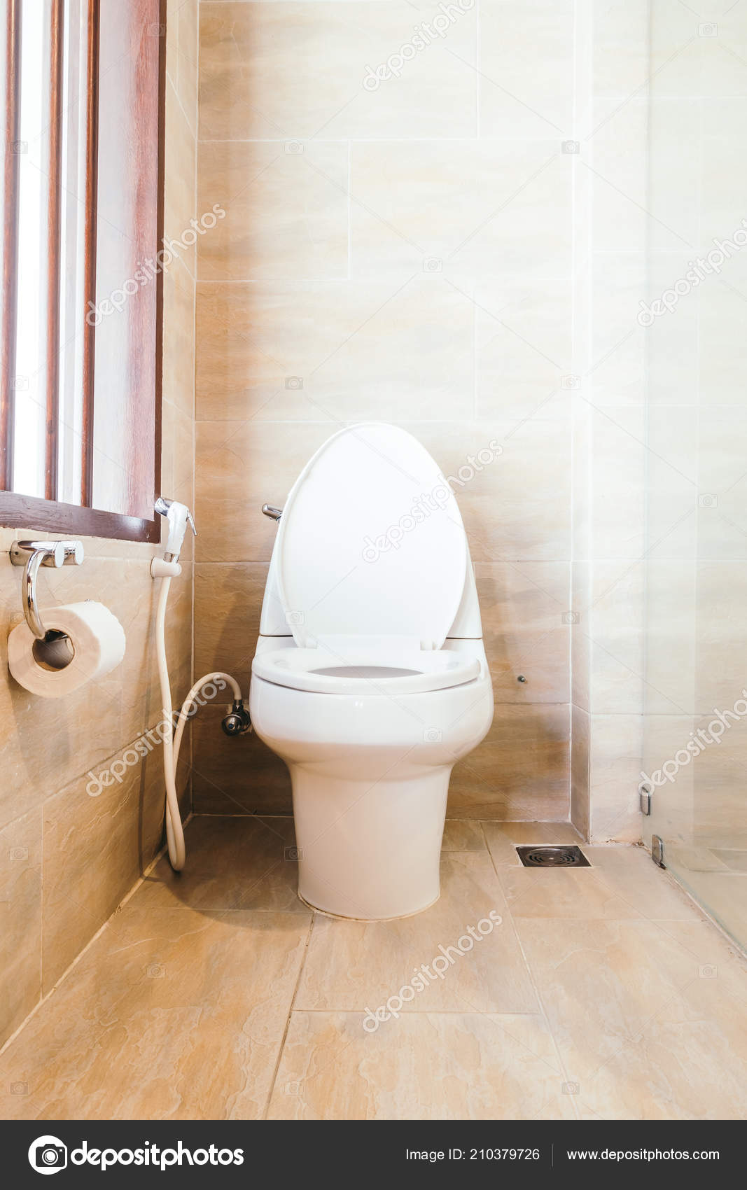 Weiße Schale Sitz Dekoration Badezimmer Interieur — Stockfoto ...