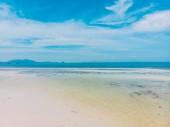 Letecký pohled na krásnou tropickou pláž a moře se stromy na ostrově pro cestování a dovolenou