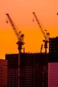 Fotografie Krásná silueta jeřáb ve výstavbě budovy v západu slunce