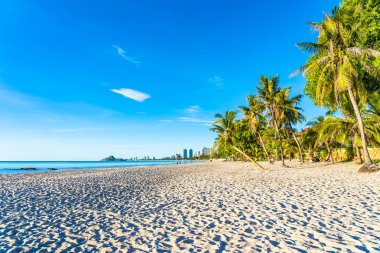 "Картина, постер, плакат, фотообои ""открытый пейзаж морского океана и пляж с кокосом фото"", артикул 278633748"