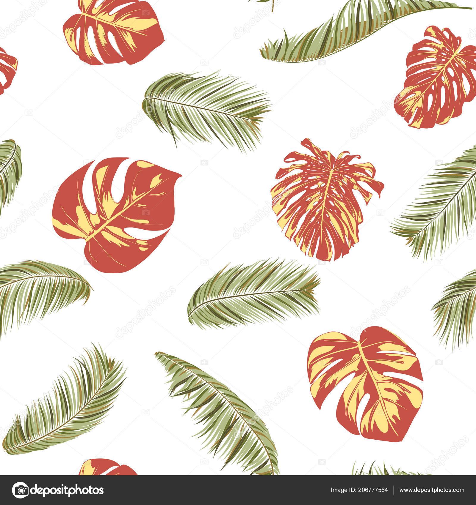 Verano exótico Tropical Palma flores, hoja de filodendro. Selva la ...