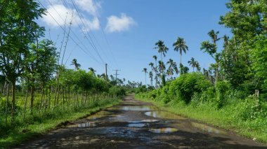 Typical bumpy road leading across Samoan island