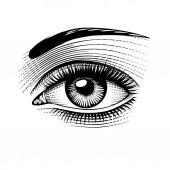 Fotografia Occhio di donna. Incisione depoca stilizzato disegno. Illustrazione di vettore